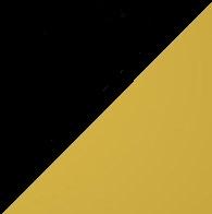 Μαύρο/Χρυσό