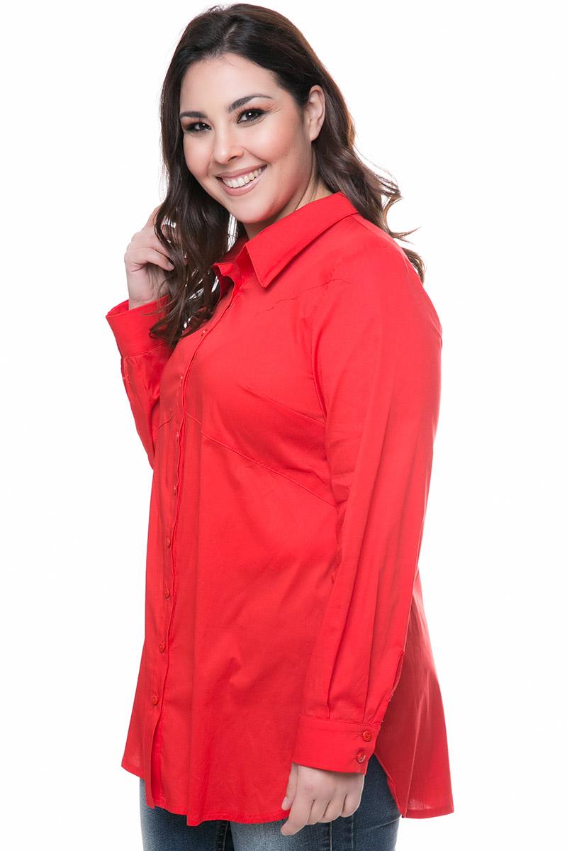 Πουκάμισο Χρώμα κόκκινο Διαθέτει γιακά Μακριά μανίκια με μανσέτες Ασύμμετρη γραμμή με το πίσω μέρος να είναι πιο μακρύ Σταθερό ύφασμα Σύνθεση96%COT 4%SP Η γραμμή είναι κανονική - Συμβουλευτείτε το μεγεθολόγιο.Κατάλληλη για all-day chic εμφανίσεις!Διαθέσιμα μεγέθη από S έως ΧXL.Το μοντέλο έχει ύψος 1.75cm και φοράει μέγεθος S.